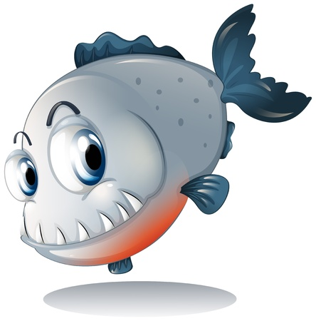Illustration of a big gray piranha on a white background Vector