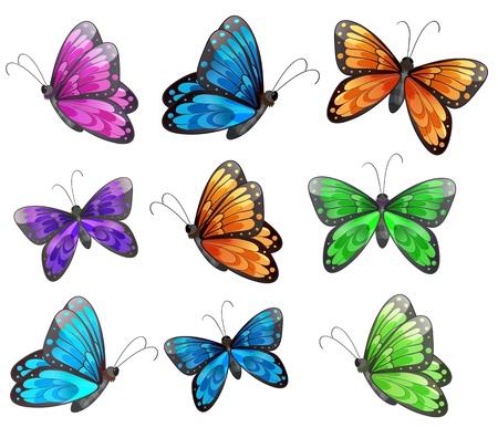 butterflies flying: Illustrazione dei nove farfalle colorate su uno sfondo bianco Vettoriali