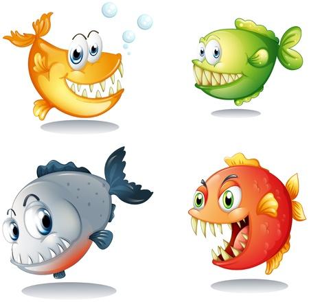 r image: Illustrazione dei quattro diversi tipi di pesci con grandi zanne su uno sfondo bianco Vettoriali
