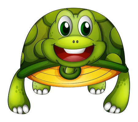 carapace: Illustration of a green turtle on a white background
