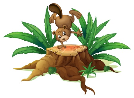 Illustration of a wood with a beaver on a white background  Vector