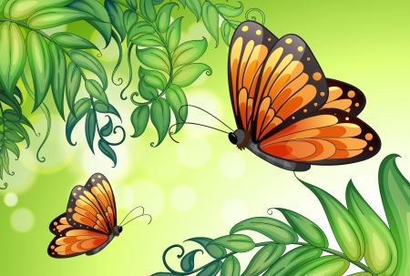 big and small: Illustration of a design with butterflies and plants Illustration