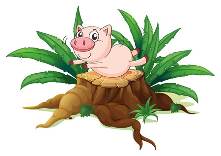 balancing: Illustration of a pig balancing above a wood on a white background  Illustration