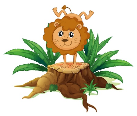 Illustration of a young lion doing a handstand above a wood on a white background  Stock Vector - 19301965