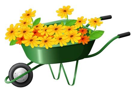 pushcart: Illustration of a pushcart full of flowers on a white background