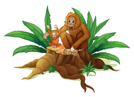 illegal logging: Illustration of a trunk with a small and a big orangutan on a white background