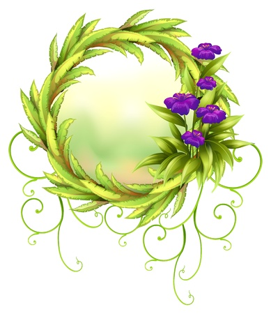 flower vines: Illustration of a round green border with violet flowers on a white background