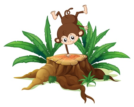 sliced tree: Illustration of a tree with a small playful monkey on a white background Illustration