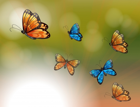 Illustration of a special paper with orange and blue butterflies Vector