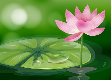 Illustration of a pink flower at the pond