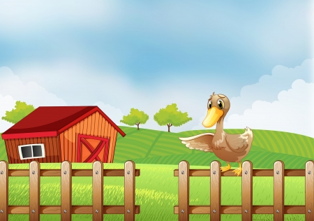 Illustration of a duck at the farm Stock Vector - 19301678