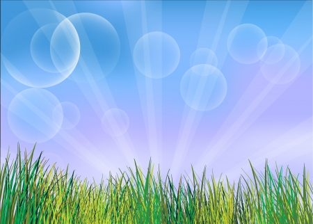 Illustration of the green grasses Vector
