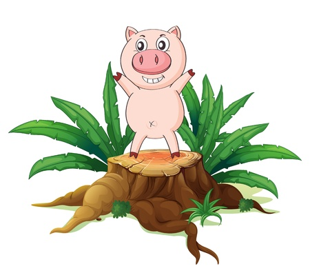 illegal logging: Illustration of a big tree with a pig on a white background