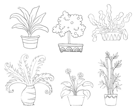 Illustration of the six different kinds of plants on a white background Vector