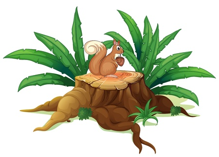 Illustration of a wood with a squirrel on a white background  Vector