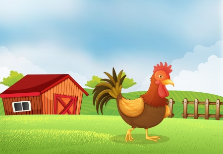 Illustration of a rooster in the farm with a wooden house at the back
