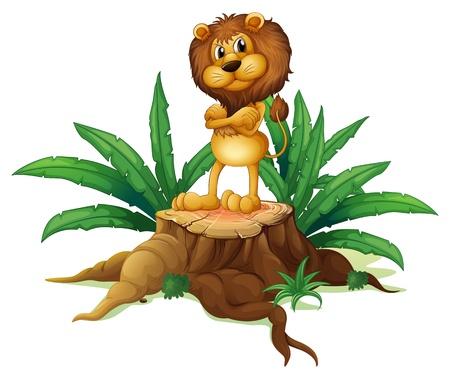 recursos naturales: Ilustración de un león que estaba por encima de la madera sobre un fondo blanco