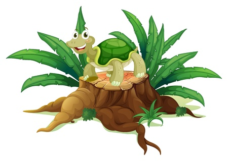 large turtle: Illustration of a tree with a turtle on a white background