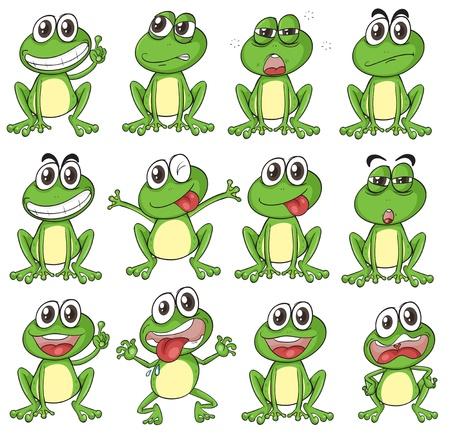 rana venenosa: Ilustración de las diferentes caras de una rana sobre un fondo blanco Vectores