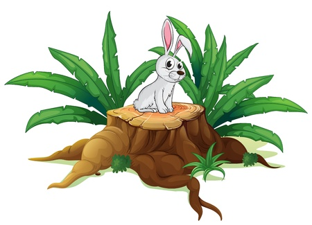 Illustration of a bunny above a trunk on a white background Vector