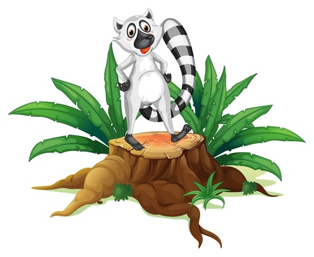 illegal logging: Illustration of a trunk with a lemur on a white background