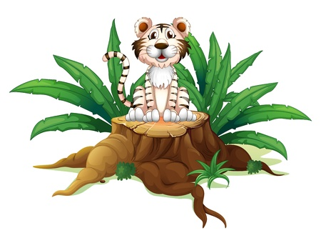 Illustration of a tiger above a trunk on a white background Stock Vector - 19301680