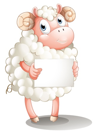 sheep sign: Illustration of a sheep with a blank signboard on a white background Illustration