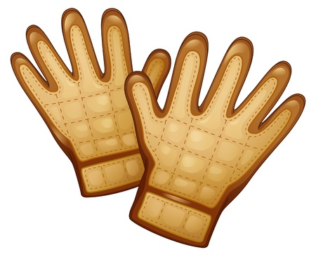 leather gloves: Illustration of a pair of leather gloves on a white background Illustration