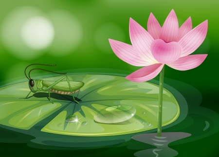 lilypad: Illustration of a grasshopper above a waterlily beside a pink flower