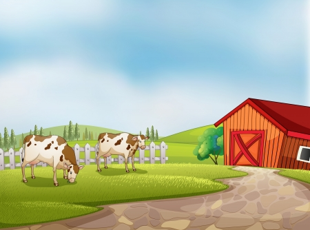 milking: Illustration of the two cows at the farm with a barn and fence