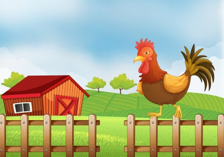 Illustration of a rooster above the fence
