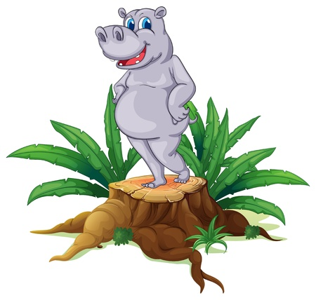 Illustration of a hippopotamus standing on a stump with leaves on a white background Stock Vector - 19390010