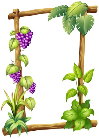 Illustration of a framed wood with grapes on a white background