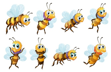 wasps: Illustration of the eight bees in different positions on a white background