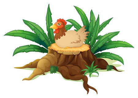 Illustration of a chicken above a stump on a white background Vector