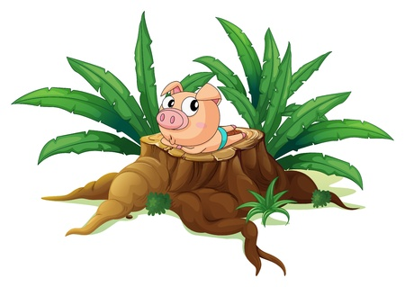 Illustration of a pig lying down above the wood on a white background Stock Vector - 19390133