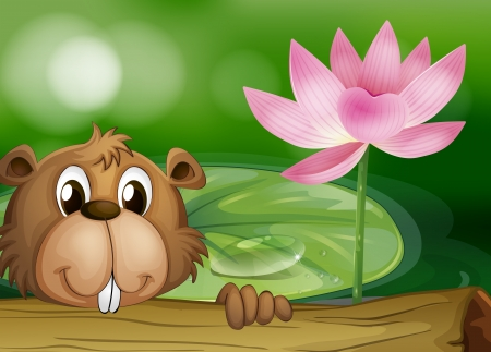 Illustration of a beaver beside a pink flower Vector