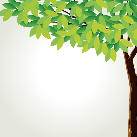 photosynthesis: Illustration of a tall tree on a white background
