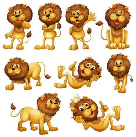 lions: Illustrations of the lions in different positions on a white background Illustration