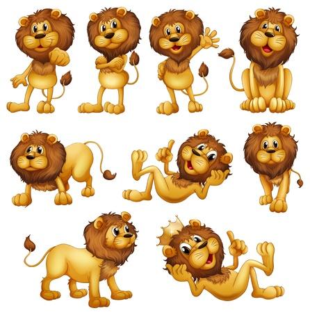 leones: Ilustraciones de los leones en diferentes posiciones sobre un fondo blanco