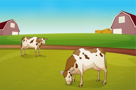 Illustration of the two cows in the farm