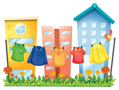 green parrot: Illustration of the hanging clothes in front of the buildings on a white background  Illustration