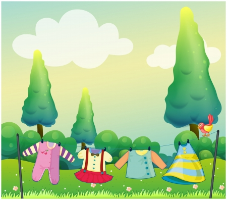 Illustration of the hanging clothes near the pine trees Illustration