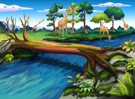 Illustration of a flowing river at the forest Vector