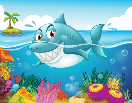 Illustration of a shark in the sea with corals  Stock Vector - 19389910