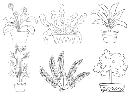 Illustration of the silhouettes of different shrubs on a white background Vector