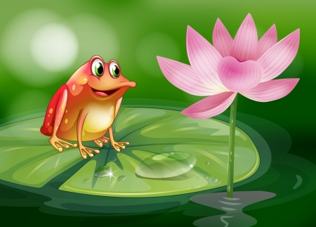 Illustration of a frog above the waterlily beside a pink flower