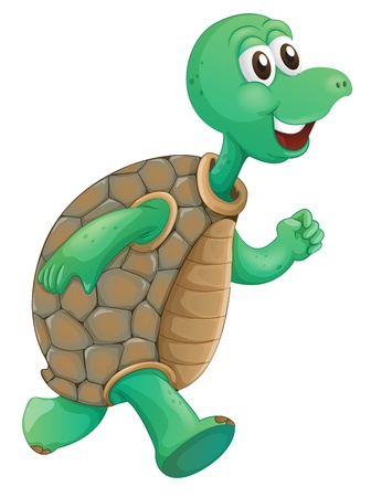 green sea turtle: Illustration of an old turtle running on a white background