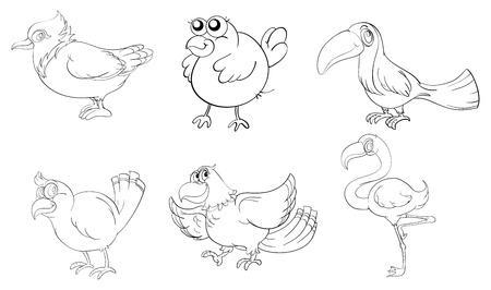 talkative: Illustration of the different birds in doodle design on a white background Illustration
