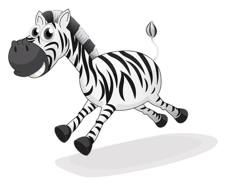 lllustration of a zebra running on a white background  Stock Vector - 19389884